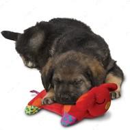 """""""Petstages Puppy Cuddle Pal"""" ЩЕНОК-ГРЕЛКА для сладкого сна - игрушка для собак"""