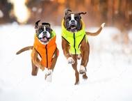Курточка двухсторонняя, оранжево-салатовая