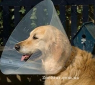 Ветеринарный пластиковый воротник для собак и кошек