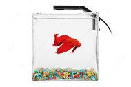 Настольный аквариумный набор Betta Set