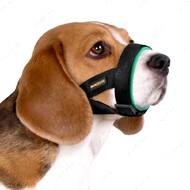 Намордник для собак универсальный бирюзовый BRONZEDOG