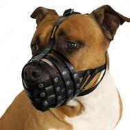 Намордник водоотталкивающий биотановый для собак Питбуль, амстафф BRONZEDOG