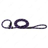 Поводок-удавка для собак светоотражающий черно-фиолетовый ACTIVE BRONZEDOG