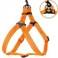Шлея для собак светоотражающая оранжевая ACTIVE BRONZEDOG
