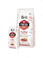 Сухой корм со свежей говядиной и тыквой для щенков крупных пород Brit Fresh Beef with Pumpkin Puppy Large Bones & Joints