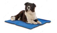Охлаждающий коврик для собак CROCI