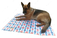 Охлаждающий коврик для собак морские звезды CROCI