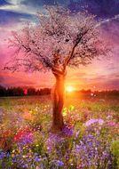 """Алмазная мозаика """"Великолепие весны"""", полная выкладка"""