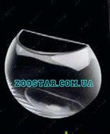 """""""Aqua Decoris"""" аквариум """"Полусфера"""" ручной работы, 3.5 литров"""