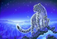 Алмазная мозаика без рамки Dreamtoys Тигрица с малышами