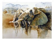 Картина по номерам Dreamtoys Утоляя жажду