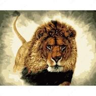 Картина по номерам Dreamtoys Царь зверей