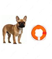 Спасательный круг для игры с собакой