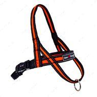 Шлея для собак оранжевая Alfresco Y