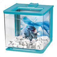 Аквариум для петушка голубой Betta EZ Care
