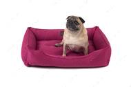 Лежак Dreamer Berry ярко розовый