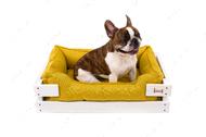 Лежак с деревянным каркасом белого цвета и мебельной рогожкой горчичного цвета Dreamer White + Mustard