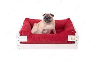 Лежак с деревянным каркасом белого цвета и мебельной рогожкой красного цвета Dreamer White + Red