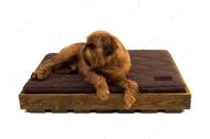 Ортопедический стеганный матрас Oliver из коричневой рогожки с усиленной поверхностью в деревянном каркасе натурального цвета Brown + Brown