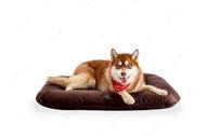Влагостойкий двухсторонний лежак-понтон коричневый  Lounger Brown Waterproof