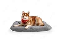 Влагостойкий двухсторонний лежак-понтон серый Lounger Gray Waterproof