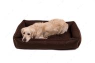 Лежак для собаки Sofa Brown, коричневый