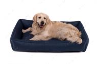 Лежак для собаки Sofa Denim, синий
