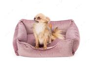 Лежак Dreamer Velur Pink лиловый