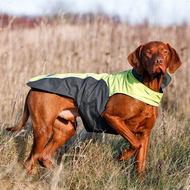 """""""Touchdog Coat"""" ТАЧДОГ плащ попона для собак"""