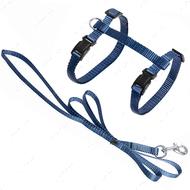 Шлея для котов серо-голубая Cat Harness and Leash Ziggi