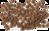 Сухой корм для собак всех пород с белой рыбой Ocean Fusion