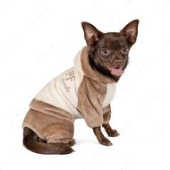 Костюм для собак Pet Fashion ALF молочно-коричневый
