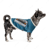 Жилет для собак Pet Fashion APOLLO