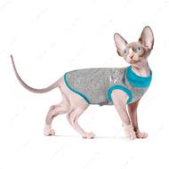 Свитер для кота Pet Fashion BRUCE бирюза