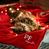 Плед для собак и котов New Year Gift