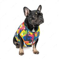 Жилет для собак принт Pet Fashion SPRING