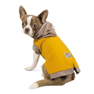 Толстовка Pet Fashion Капсула для собак