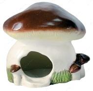 Домик - гриб Белый