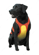 Chest Protector защита для охотничих собак - оранжевый