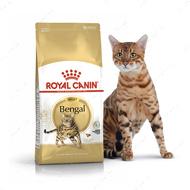 Сухой корм для кошек породы Бенгальская Bengal Adult