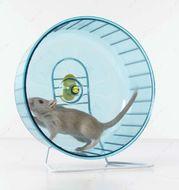Тренажер колесо для хомяков и крыс Rolly Giant+Stand