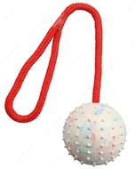 Мяч апортировочный для собак Ball on a Rope