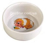 Миска для морской свинки, керамика