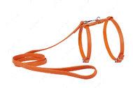 Шлея с поводком для кошек и мелких собак оранжевая GLAMOUR WAUDOG