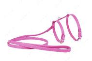 Шлея с поводком для кошек и мелких собак розовая GLAMOUR WAUDOG
