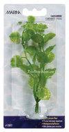 Аквариумное растение CARDAMINE mini 10 см