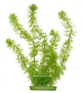 Аквариумное растение Hagen Marina Hornwort