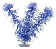 Аквариумное растение Hagen Marina Hornwort babyblau