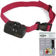 АНТИЛАЙ электронный ошейник для собак, для дрессировки, коррекция беспричинного лая Bark Control