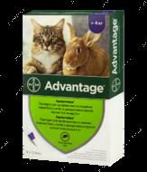 Адвантейж средство от блох для кошек от 4 кг ADVANTAGE Cat